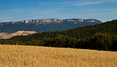 The rich landscape on the way to Villamayor de Monjardín on the Camino de Santiago.