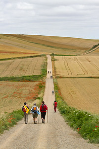 The long, straight path to Santo Domingo de la Calzada from Cirueña.