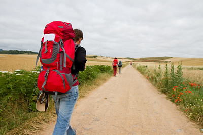 A heavily-laden pilgrim walks the straight path through fields of wheat.