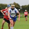 Tara beat Shire Gaels Senior Camogie Cship 2017