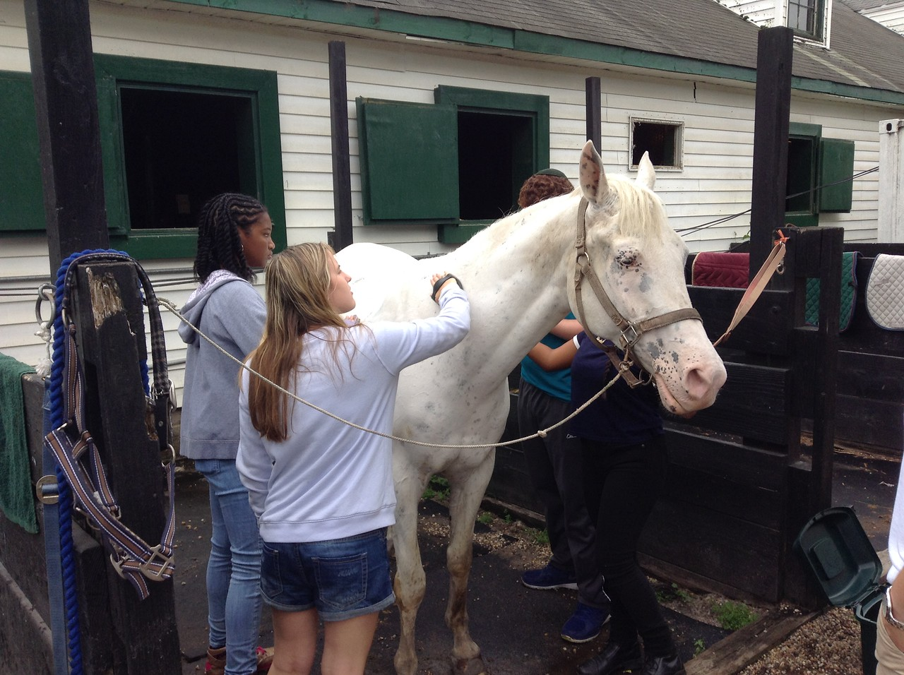 campers with horse