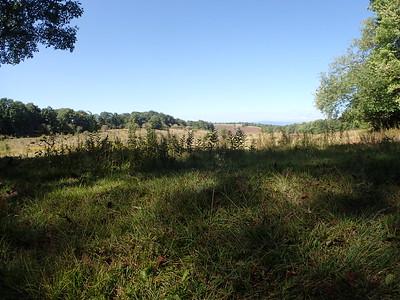 Camp Alegheny