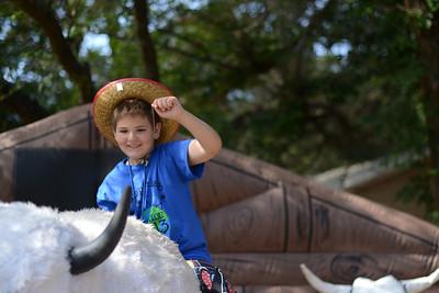 Bull Riding! Yee-Haw!