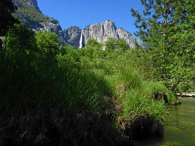 Yosemite P1010465