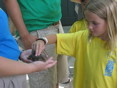 Camp Zoofari at Houston Zoo