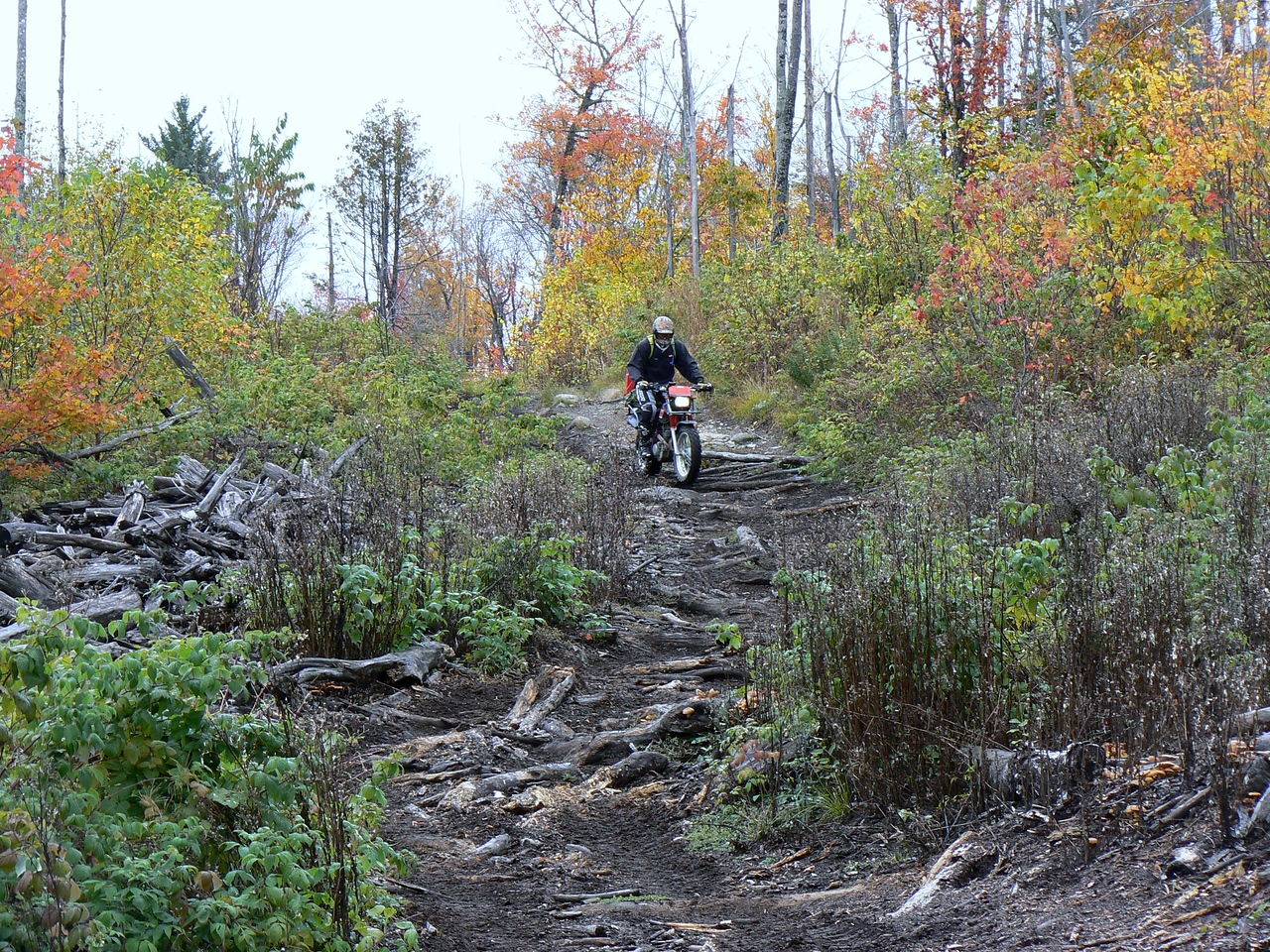 Me descending the Dimmick Mnt trail