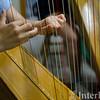 2014 HS Harp 112