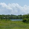 Webster Pond.