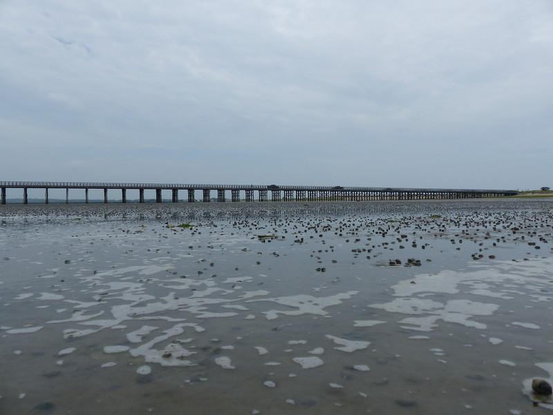 Duxbury Beach field trip...