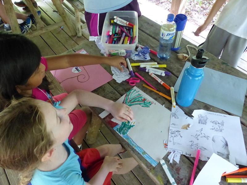 Creating wetland habitats.