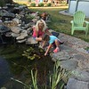 Miss Dorry sharing her pond with Emma