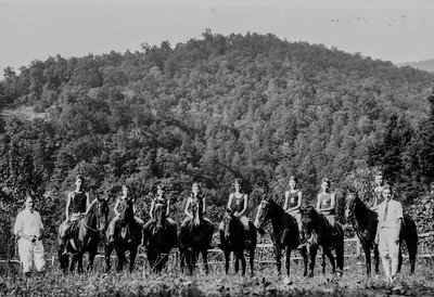Horse team, 1920's approx.