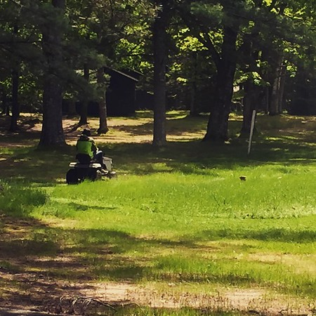 It's been rainy warm spring.  Lot's of lawn mowing to do at camp!