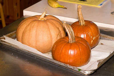 The next group of pictures was from the cooking class.  The class roasted pumpkins in an open-hearth fire.