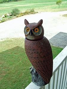 Carved owl at John C Campbell Folk Arts School