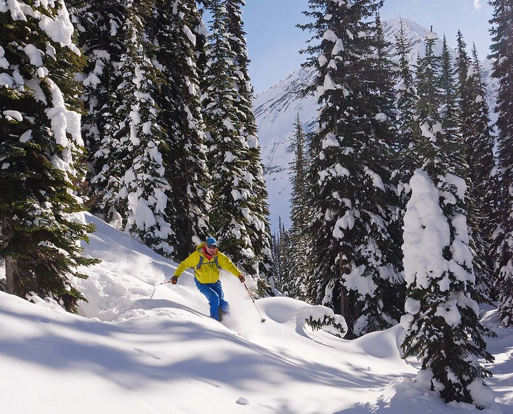 With skins back on, we climbed a bit, and after a brief detour, found good glade skiing in the Alan Campbell trees....