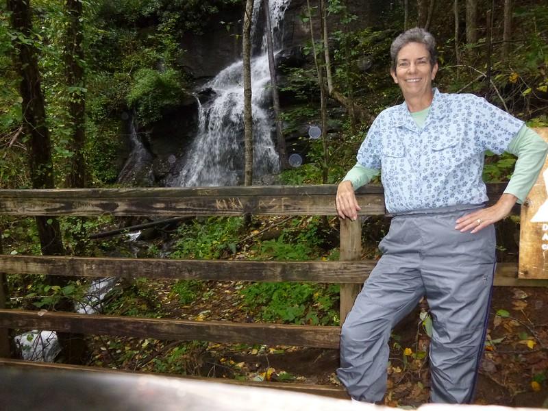 72 Desoto Lower Falls P1010586-a