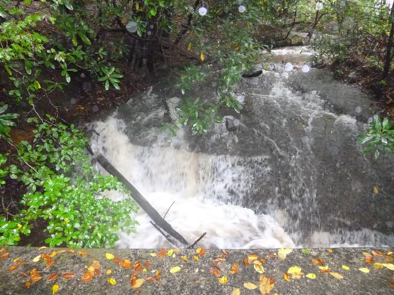 52 Desoto Falls CG P1010572-a