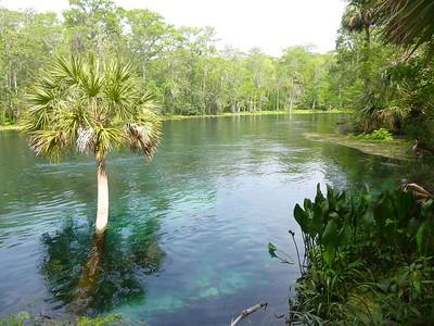 Silver Springs FL April 4,5,6