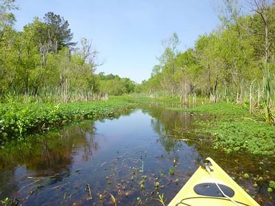 Three Rivers FL April 10-13
