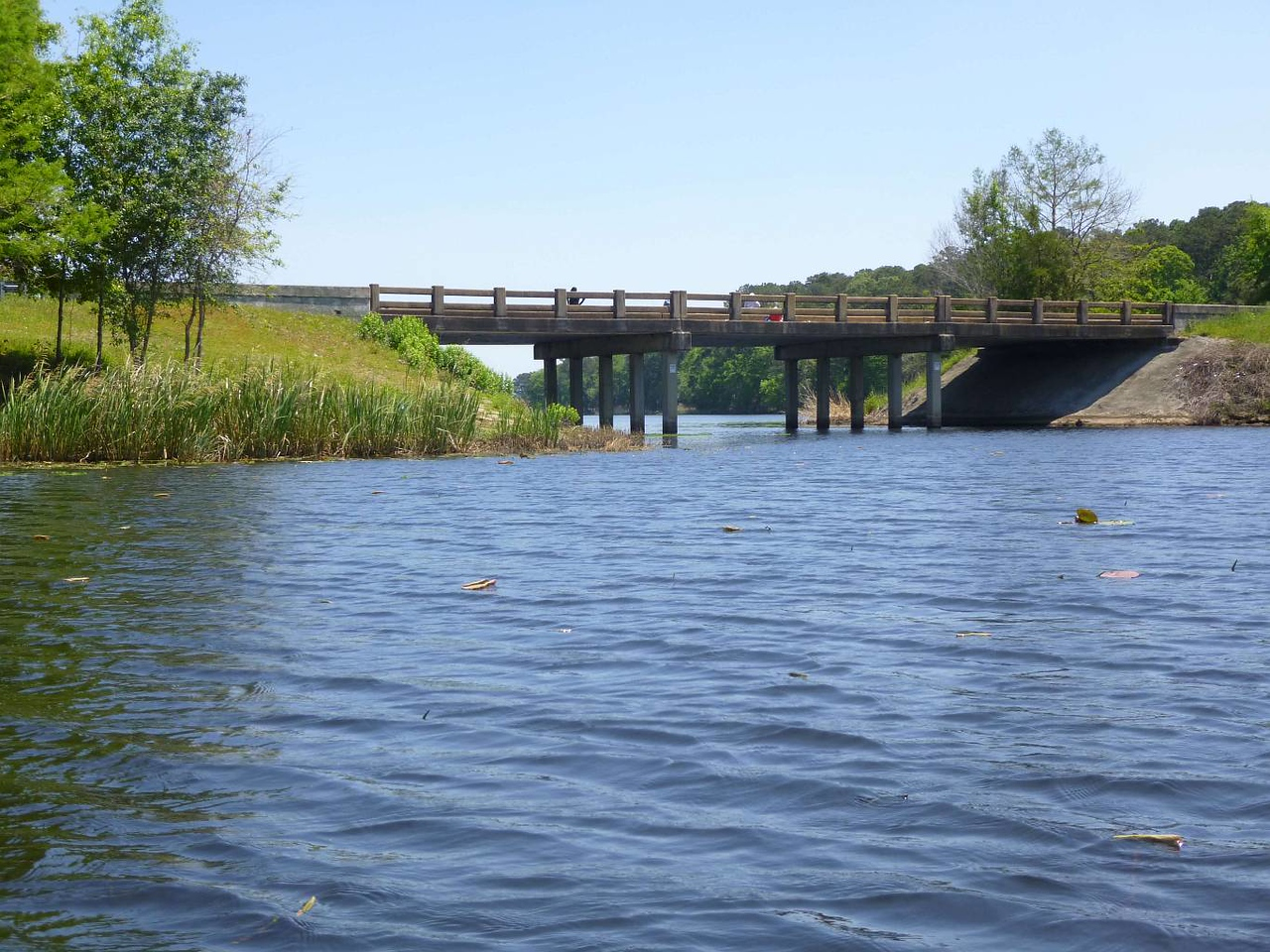 day 2 17 back under FL271 bridge P1020750-a-C