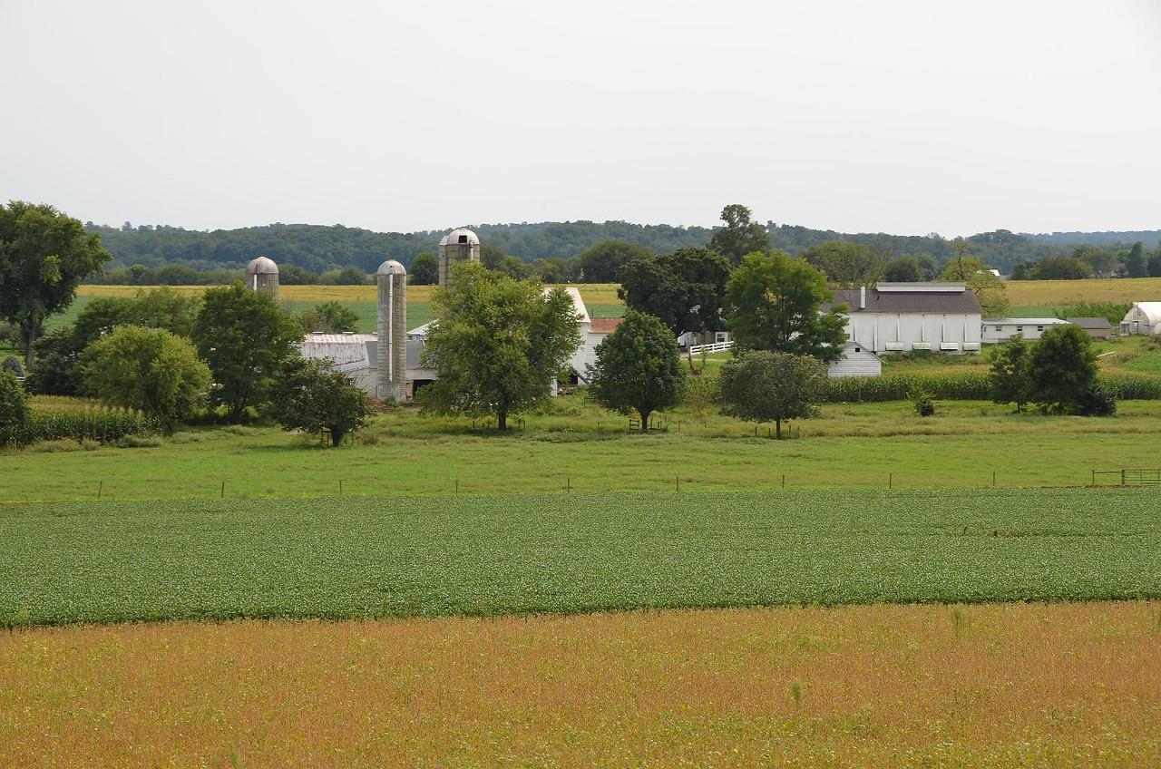 121- StrasburgRR_5616-C