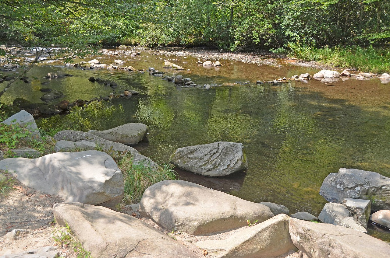 4316 – Before afternoon coffee, we took a short dip (no, NOT skinny!) in the stream that ran right by us. VERY refreshing.