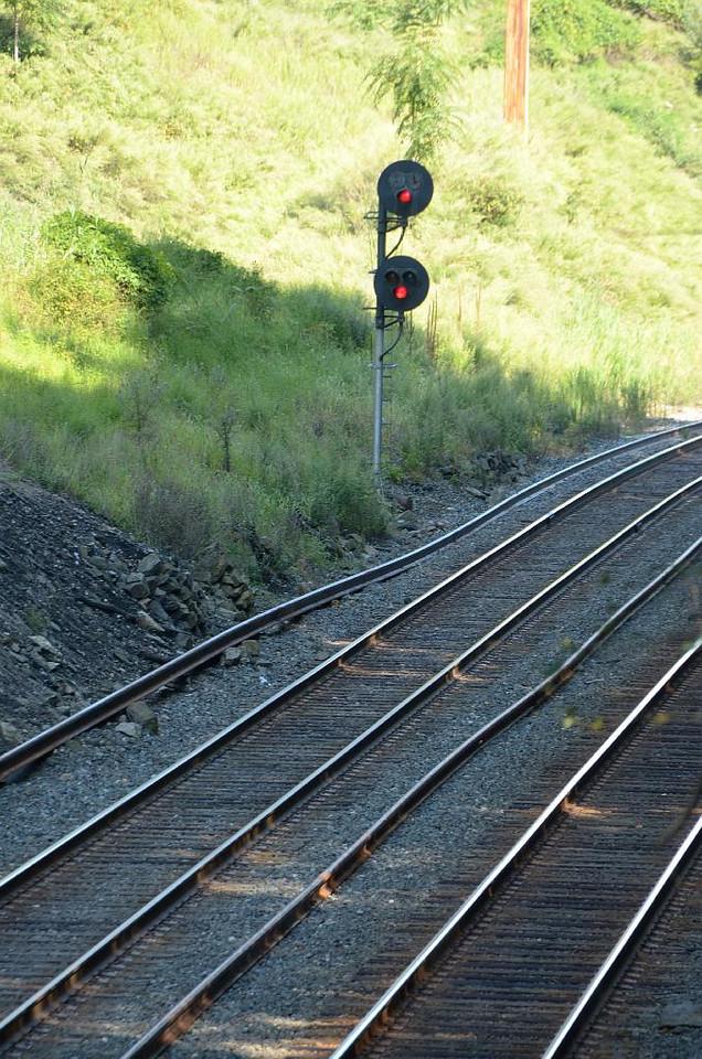 Mmmmm, tracks.....