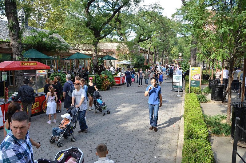 Central Park Zoo. They have other kinds of animals there too.