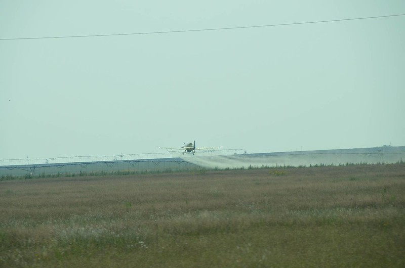 Seen lots of movies and videos of cropdusters. This was our first 'live' cropduster.