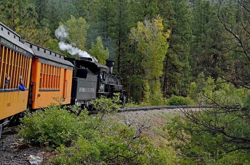 7610 - Thankfully, the ride goes from heart-stopping moments to just a beautiful ride in the pretty forest.