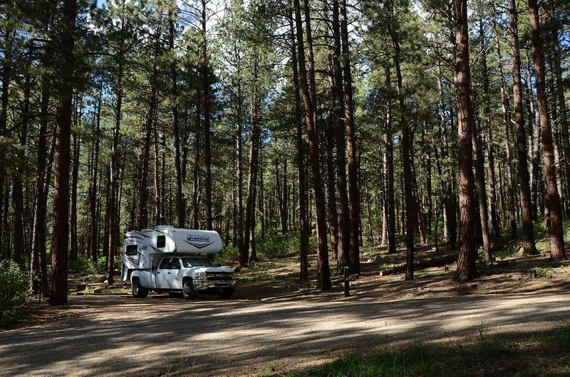 218 - Junction Creek CG #D4, Durango CO_7504-C