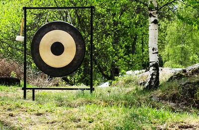 Gong i grønnsvær
