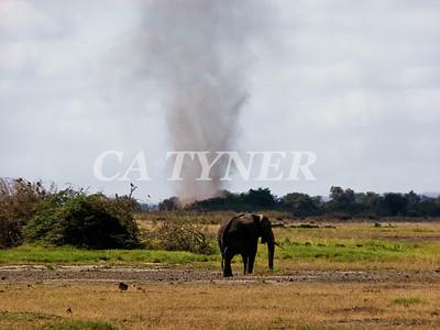 Dust Devil  Amboseli National Park Kenya Africa