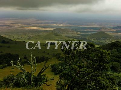 Cloud Forest Campi Ya Kanzi Kenya Africa