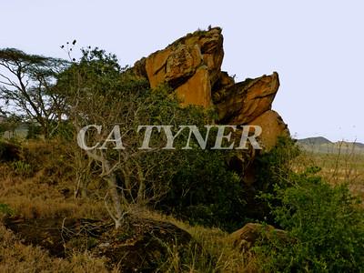 Overlook Campi Ya Kanzi Kenya Africa 2