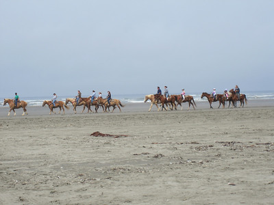 They offered horse rides up and down the beach