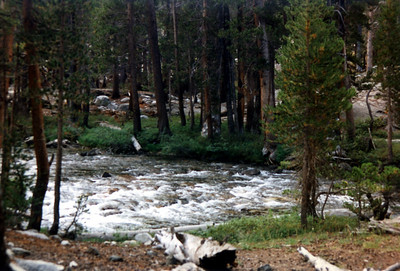 View back across Evolution Creek after we forded it.
