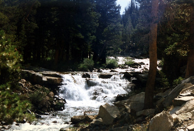 Cascades on Evolution Creek. We're looking for a (safe) place to ford the creek.