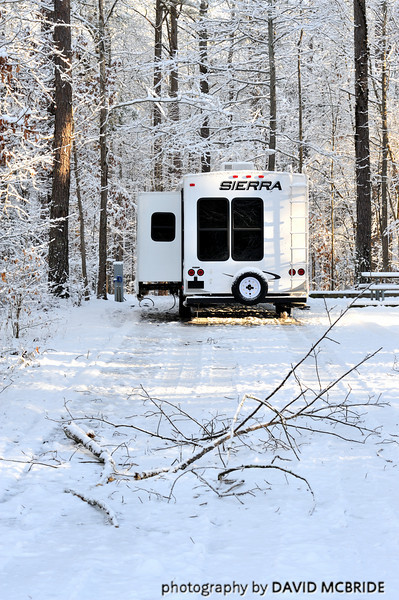 Some time in the night this branch fell several yards behind our camper. I am so glad it missed! Snow fell from the trees landing on the roof of the camper. It sounded like children running around on the roof.