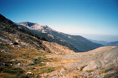 View down Monarch Creek Canyon.