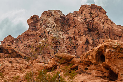 Valley of Fire 12-2014-32