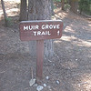 Tuesday afternoon. Muir Grove Trail sign at Dorst Campground,