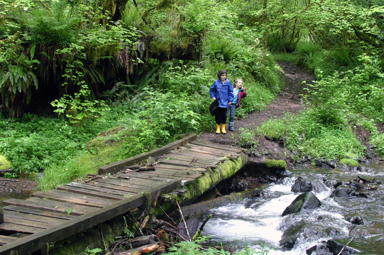 "<font size=""+1"">So the Kids and I go for a walk exploring the forest.  The area that we're camped at is a very popular dirtbike play area, so there are lots a trails for us to hike on.  Here we come across a bridge to protect the baby salmons (that would be fry?  Smelt? Fingerlings?  What ever..) from to much silt in the water. Melissa dubbed this ""the Very Dangerous Bridge"", which is funny.  I ride across this bridge on my dirtbike every time we're in the area, but WALKING across it?  She was right - a VERY dangerous bridge.. </font>"
