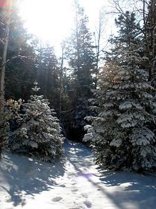 Sun and snow.