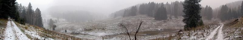 Trail Near Spring