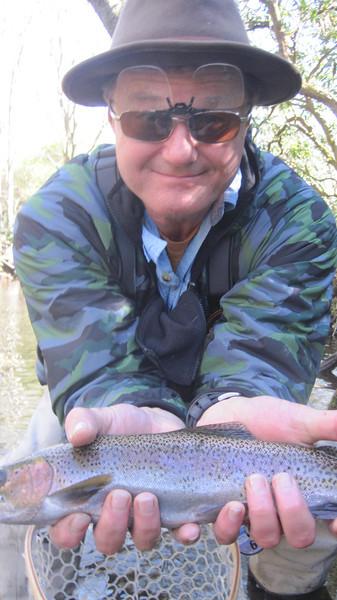 Davidson River Fishing & Camping