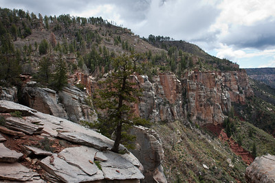 Looking along the North Rim
