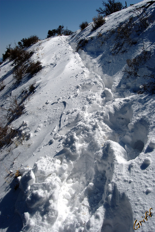 On the dark side of the mountain, there is still some pretty deep snow on the trail.  In some places, the packed snow from people's trekking was so deep, it came to my knee.