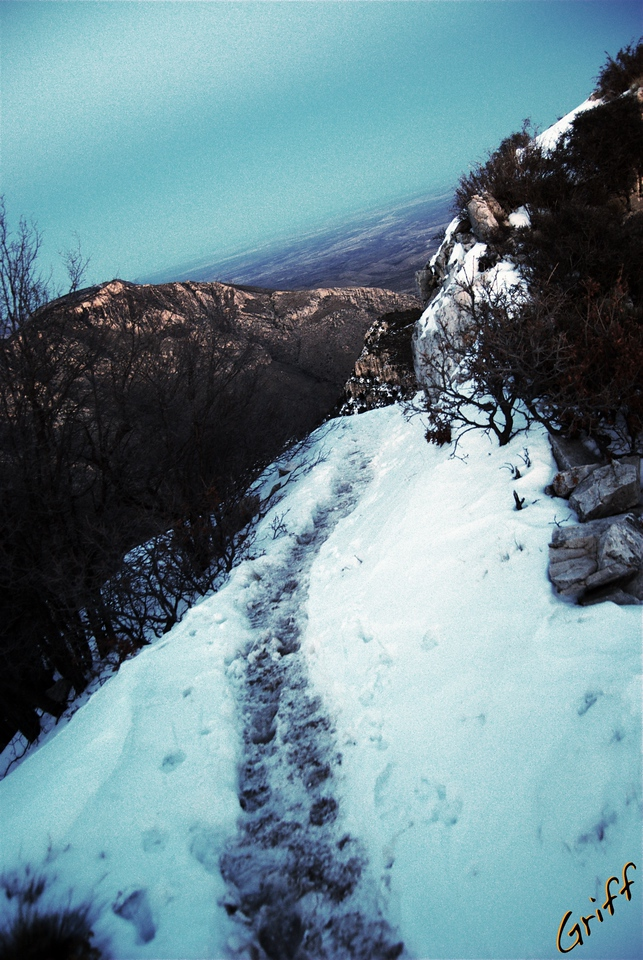 Here's my dark trail back to camp.  Dusk was waning, the ground was freezing over, and I was booking it.